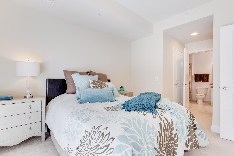 3600 S Glebe Rd 427 Arlington-large-010-Bedroom-1500x1000-72dpi