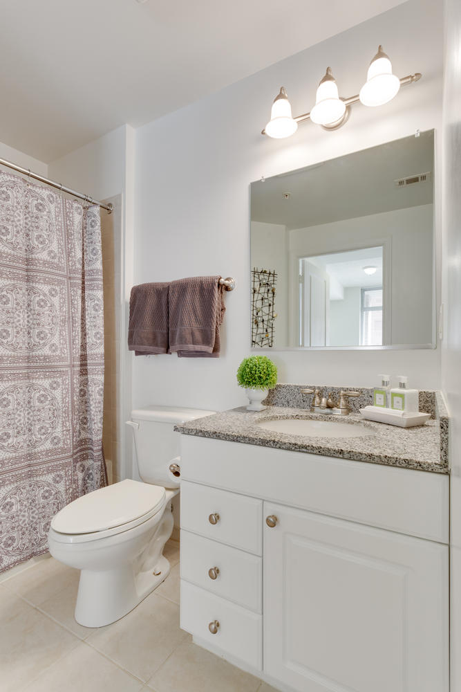 3600 S Glebe Rd 427 Arlington-large-013-Bathroom-667x1000-72dpi