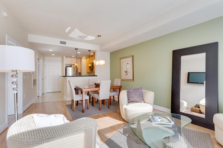 3600 S Glebe Rd 427 Arlington-large-022-Living Room-1500x1000-72dpi