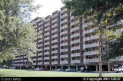 1300 Army Navy Dr #307, Arlington, VA