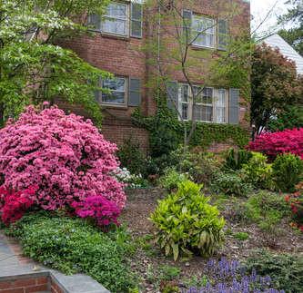 Neighborhood Narratives: Foxhall Village