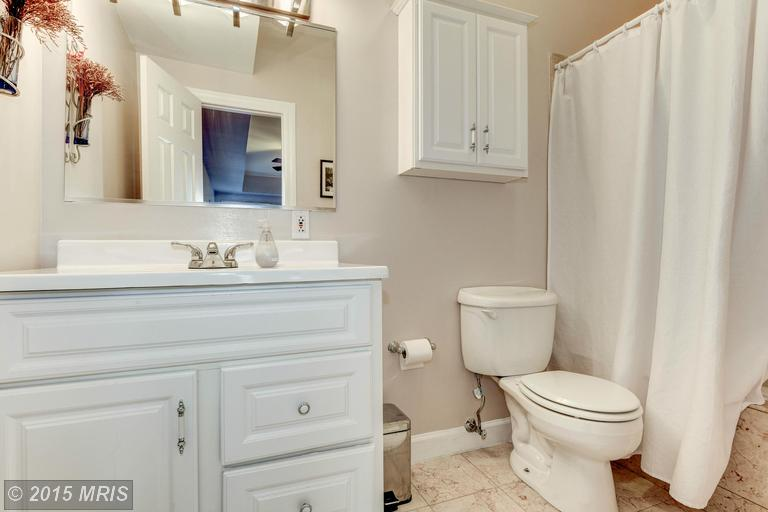DC8744954 - Master Bath with Whirlpool Tub